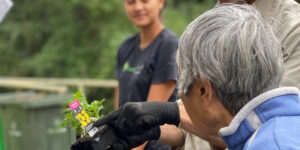Elderly Asian woman being shown a small plant seedling in a punnet